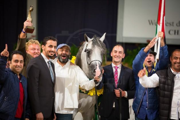 All Nations Arabian Horses Championship Aachen 2015 Results & Photos
