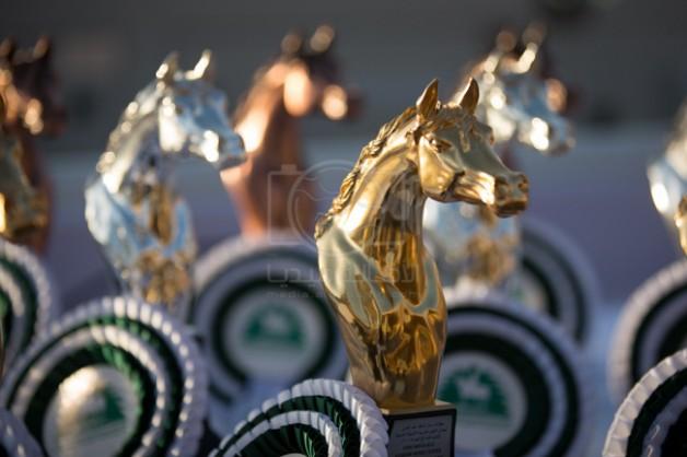 مركز الملك عبد العزيز يعلن برنامج بطولات جمال الخيل 2020 وبطولة جديدة رابعة للمنطقة الشرقية