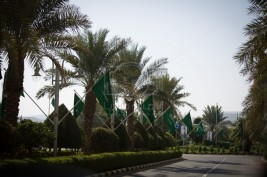 دعوات لاقامة مستشفى للخيل بديراب