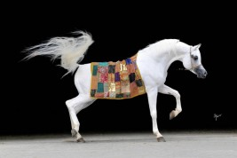 Can Horses Follow Humans' Pointing Gestures?