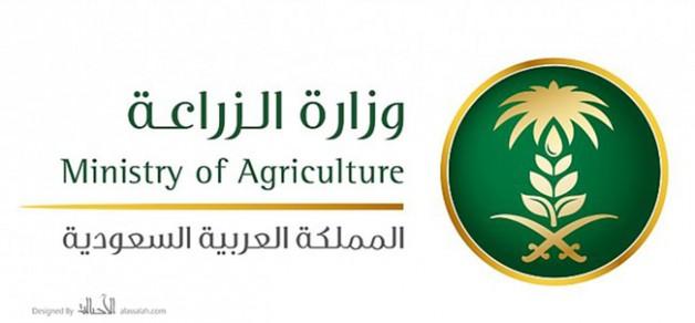 وزارة البيئة: إصدار أول ترخيص لمركز تلقيح اصطناعي ونقل أجنة الحيوانات