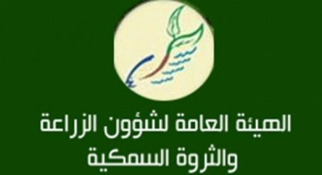 """ملاك الخيول العربية بالكويت يتجمعون الأحد أمام """"الزراعة"""" للمطالبة بحقوقهم"""