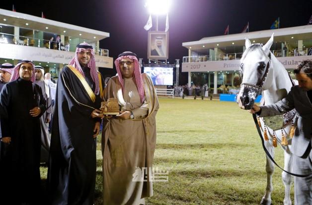 «عذبه» يستخوذ على الذهب للخيل السعودية الأصل والمنشأ في مهرجان الأمير سلطان العالمي للجواد العربي ٢٠١٧