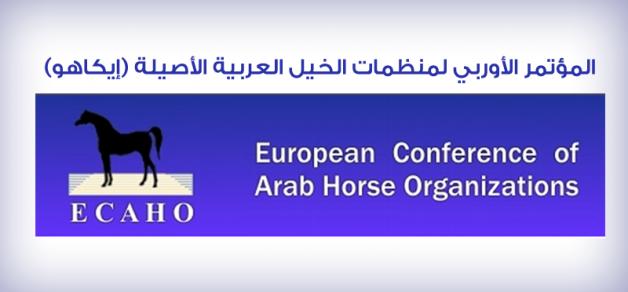 «الإيكاهو» : تكشف عن نتائج حالات تعاطي المنشطات ببطولة الأردن الوطنية 2013