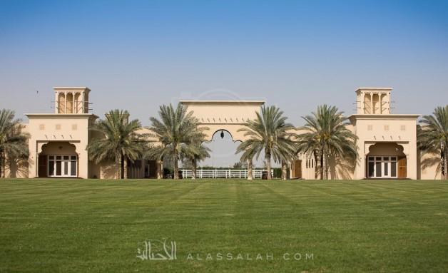 صور مقتطفة من اليوم المفتوح لمربط دبي للخيول العربية الأصيلة ٢٠١٧