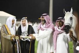 تواصل منافسات (الأحساء الوطنية الثامنة) لجمال الخيل العربية في يومها الثاني – نتائج الفئات
