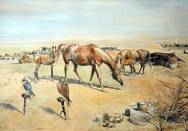 فضل الخيول العربية على سلالات الخيل البريطانية عبر التاريخ
