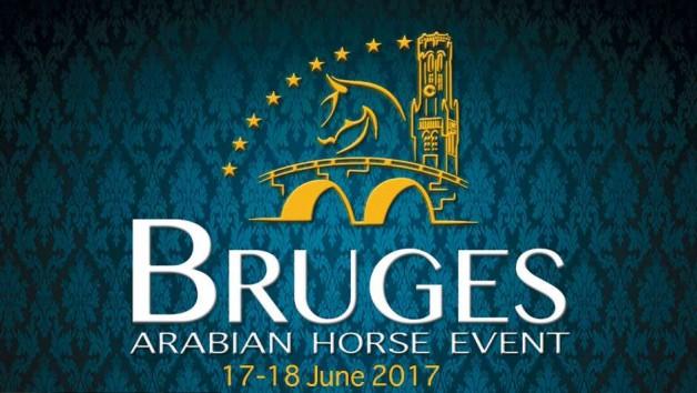 «عجمان» و«البيداء» و«المي» أبطال (بروج الدولية) لجمال الخيل العربية 2017 – النتائج النهائية