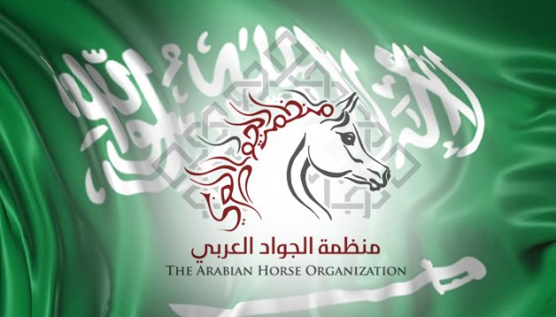 رفض تواجد منظمة الجواد العربي بالسعودية.. من المستفيد!؟