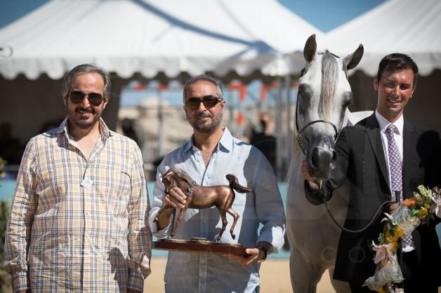 (عذبه) و(الجاسمية) و(البداير) و(العالية) و(الشقب) أبطال الذهب بـ(منتون ٢٠١٧) لجمال الخيل العربية – النتائج النهائية والصور