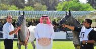 «عذبة» تكشف عن جديد «الذهب الفروسي للجمال» في الأردن