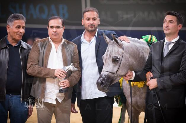 مرابط الإمارات تتألق في «آخن ٢٠١٧» وتنال لقب أفضل المنتجين في العالم