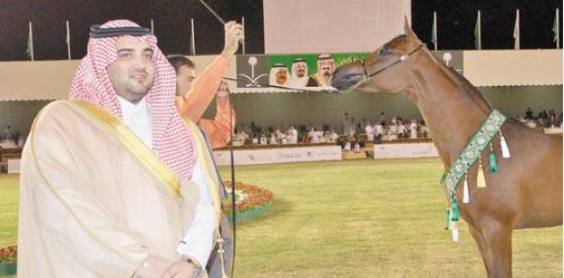 محمد بن سعود يتكفل بجوائز بطولة مكة لجمال الخيل