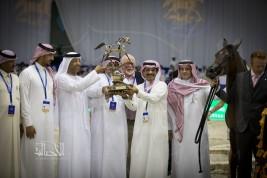 «المعود» يسطع في سماء «دبي ٢٠١٨» للجواد العربي بذهب «ادميرال» للأمهر بعمر السنة