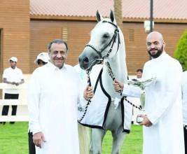الاتحاد الدولي للخيل العربية يعتمد سباقات ميدان الأمير سلطان بن عبدالعزيز