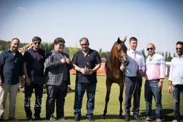 نتائج اليوم الأول لبطولة كأس العالم لمنظمة الجواد العربي شانتلي ٢٠١٨