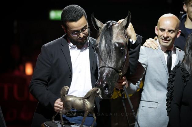 صور مقتطفة من اليوم الختامي لبطولة كأس كل الأمم آخن ٢٠١٨ لجمال الخيل العربية الأصيلة