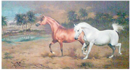فنان عراقي يفوز بجائزة المعرض السنوي لجمعية رسامي الخيول البريطانية