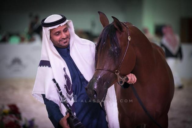 اختتام فعاليات بطولة الرياض 2019 لجمال الخيل العربية الأصيلة اليوم السبت