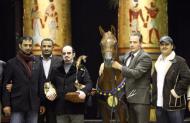 مطلق بن مشرف: دعم راعي الفروسية الأول قادها إلى (العالمية)