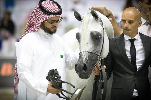 نتائج فئات اليوم الثاني لبطولة دبي الدولية للجواد العربي 2019