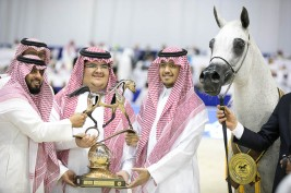 """""""Pepita"""" wins another gold medal in the Senior Mares Championship for Akmal Stud"""
