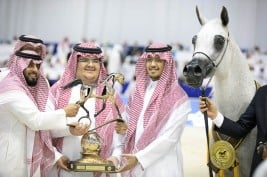 """Pepita"" wins another gold medal in the Senior Mares Championship for Akmal Stud"