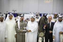 "Rising star ""EKS Farajj"" wins Junior Colts Championship Silver for Al Khashab Stud in DIAHC 2019"