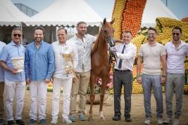 نتائج أشواط اليوم الأول لبطولة منتون الدولية 2019لجمال الخيل العربية