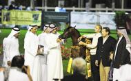بدء التسجيل ببطولة ابوظبي الدولية لجمال الخيل العربية الأصيلة ٢٠١٢