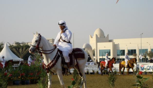 إعلان بدء التسجيل ببطولتي قطر الدولية الحادية والعشرون و البطولة المصرية لجمال الخيل العربية