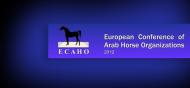 صدور جدول البطولات المعتمدة من الإيكاهو٢٠١٢