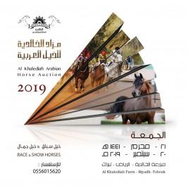 مزاد الخالدية للخيول العربية 2019 في العشرين من سبتمبر المقبل