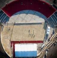 صور مقتطفة من بطولة المدينة المنورة ٢٠١٩ لجمال الخيل العربية الأصيلة