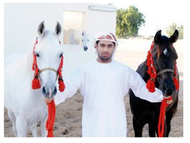 محمد المطروشي: الإنتاج المحلي من الخيول العربية الأصيلة حقق نقلة نوعية كبيرة في السنوات الأخيرة