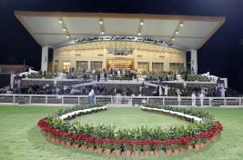 كأس رئيس الإمارات للخيول العربية بميدان الأمير سلطان يوم الخميس