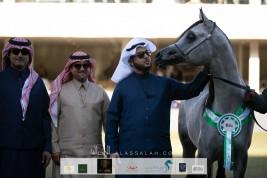 صور مقتطفة من اليوم الثاني من مهرجان الأمير سلطان العالمي 2020 لجمال الخيل العربية