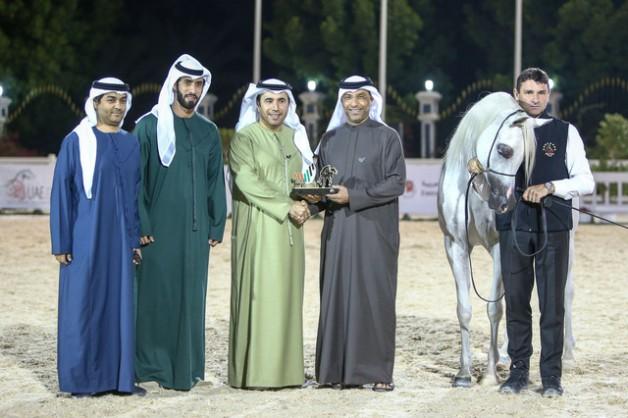"""تألق وصداره لخيول «دبي» و «عجمان» في ثاني أيام """"الإمارات الوطنية 2020"""" لجمال الخيول العربية"""