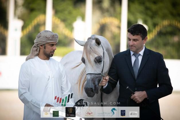 النتائج النهائية وصور لبطولة الإمارات الوطنية 2020 لجمال الخيل العربية