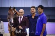 """""""ايدن سي"""" يحقق لمربط السيد برونزية فحول دبي 2020 للجواد العربي"""
