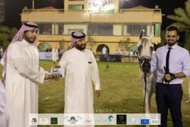 صور مقتطفة من اليوم الأول لبطولة الانتاج المحلي لجمال الخيل العربية الأصيلة التاسعة بالطائف