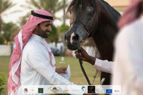 النتائج النهائية بالصور لبطولة الانتاج المحلي التاسعة 2020 لجمال الخيل العربية