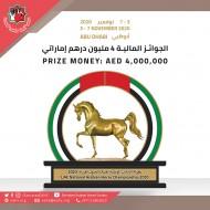 4 ملايين درهم مجموع جوائز بطولة الإمارات الوطنية لجمال الخيول العربية ٢٠٢٠ وإضافة عدد من الجوائز المخصصة للمواطنين