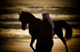 رسمياً : «الزراعة الكويتية» رفع الحظر وعودة الكويت إلى مسابقات الخيل الدولية