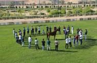 """دورة تدريبية للعارضين """"الصبحي"""" و """"الطخيس"""" يستفيد منها أكثر من 100 مواطن"""