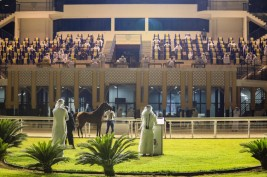 مزاد جمعية الإمارات للخيول ينجح بتحقيق 665 ألف درهم من المبيعات