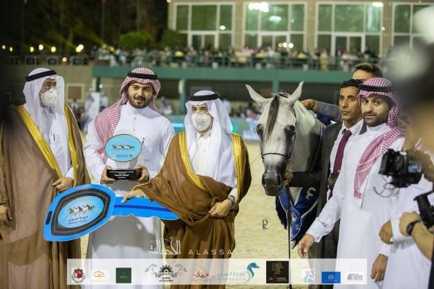 مربط الراجحيات يضع بصمته في أولى مشاركاته ويحقق 3 القاب في بطولة مكة الدولية لجمال الخيل العربية