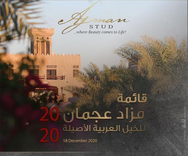52 خيلاً في مزاد عجمان للخيول العربية غداً الجمعة