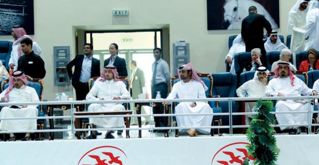 عمار النعيمي يشهد افتتاح مهرجان الشارقة الدولي للجواد العربي