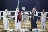 ذهبيتان وبرونزية لمربط دبي في ختام مهرجان الشارقة كلباء